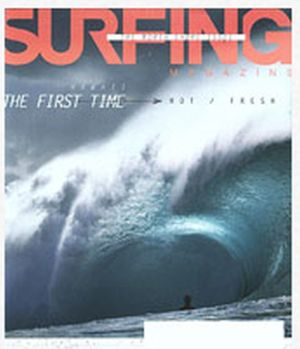 FreeBizMag Free Subscription to Surfing Magazine - US